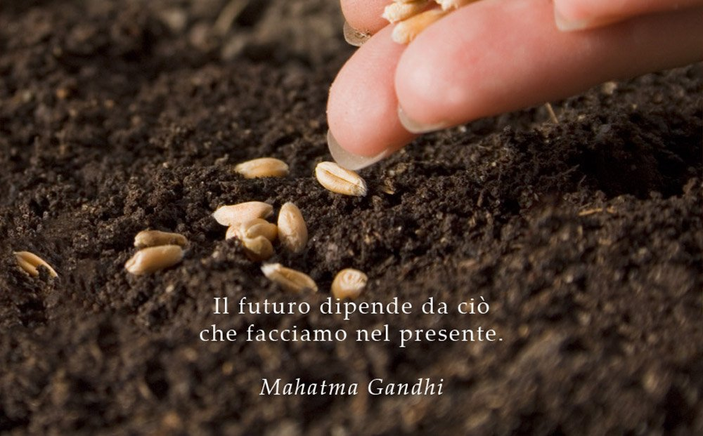 Frase Gandhi