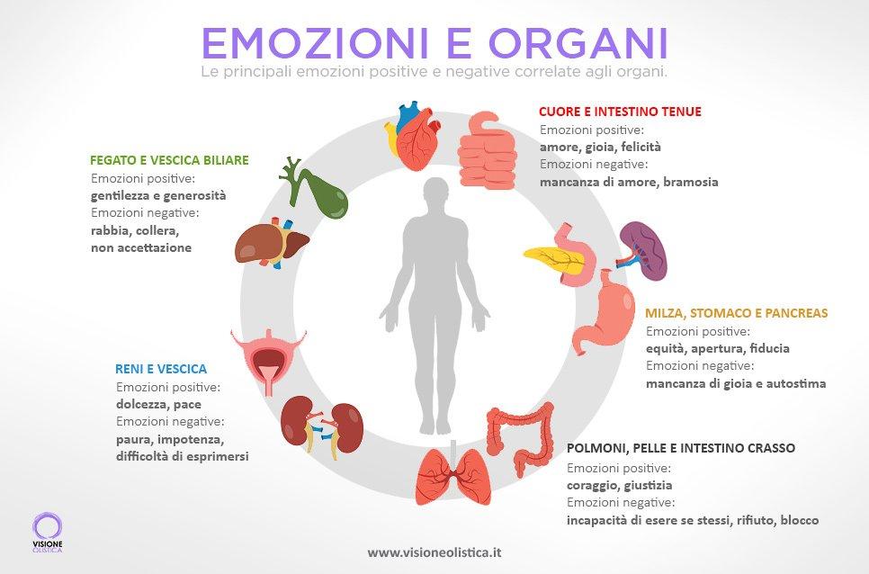 Relazione emozioni e organi