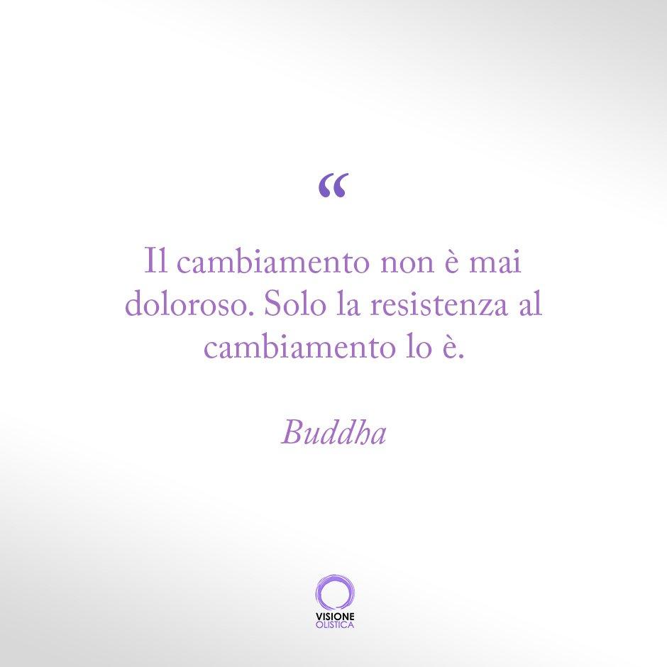 frase bella buddha