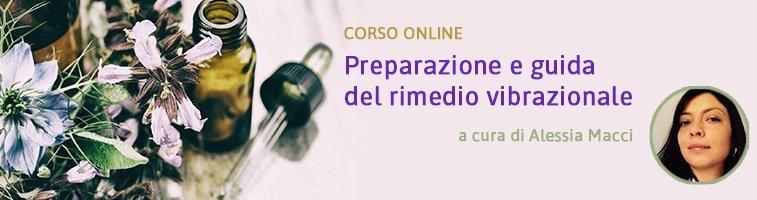 Preparazione e guida del rimedio vibrazionale