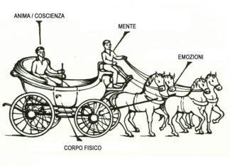carrozza gurdjeff
