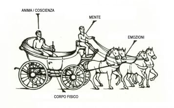 carrozza gurdjeff