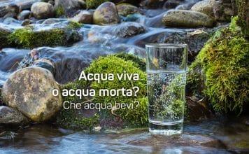 acqua viva acqua morta
