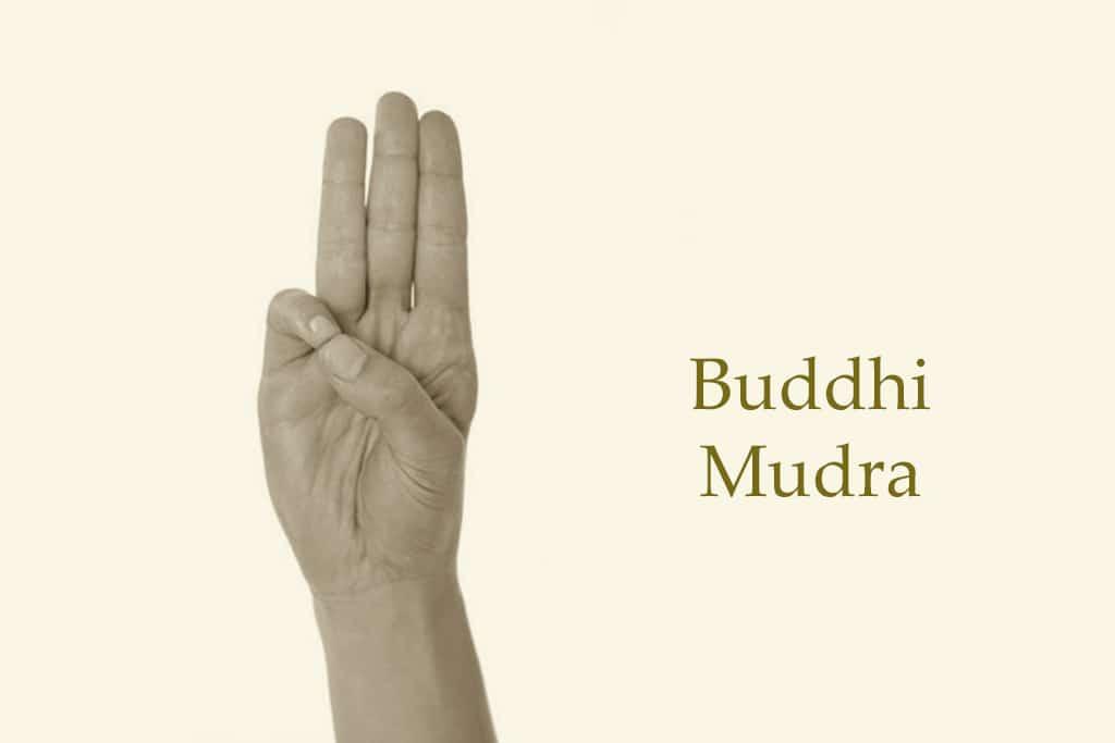 buddhi mudra