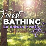 ForestBathing news